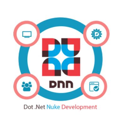 5 Things to Consider While Hiring a DotNetNuke Development Company